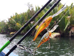 Tips Sukses Mancing Wild Fishing