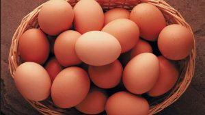 Umpan Ikan Nilem Menggunakan Telur Ayam