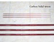 Ujung Carbon Curve