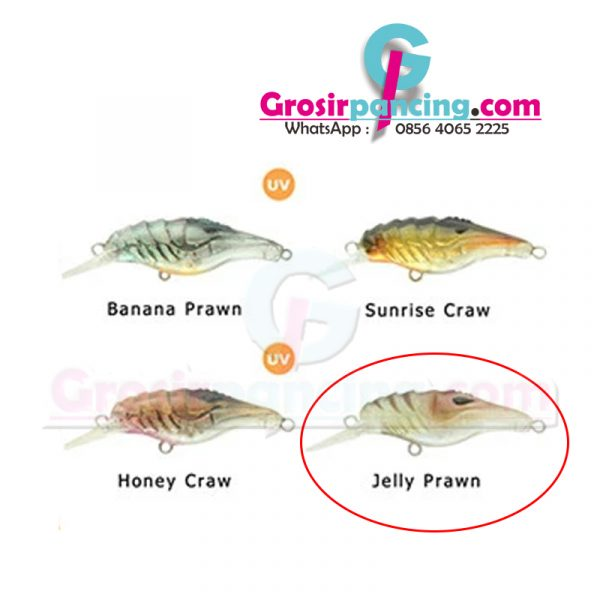Crank Mimix Jelly Prawn 40SP